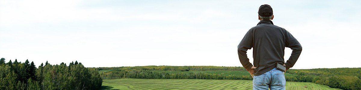 Agriculture Homme regardant son champs moissonné