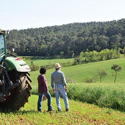 Mutations agricoles paysages